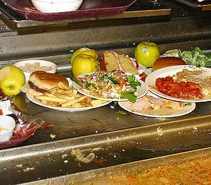 20080822_foodwaste