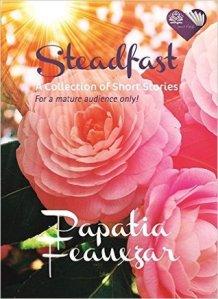 steadfast ebook