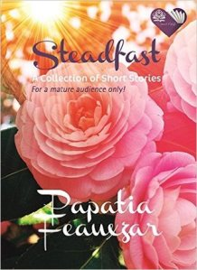 steadfast ebook