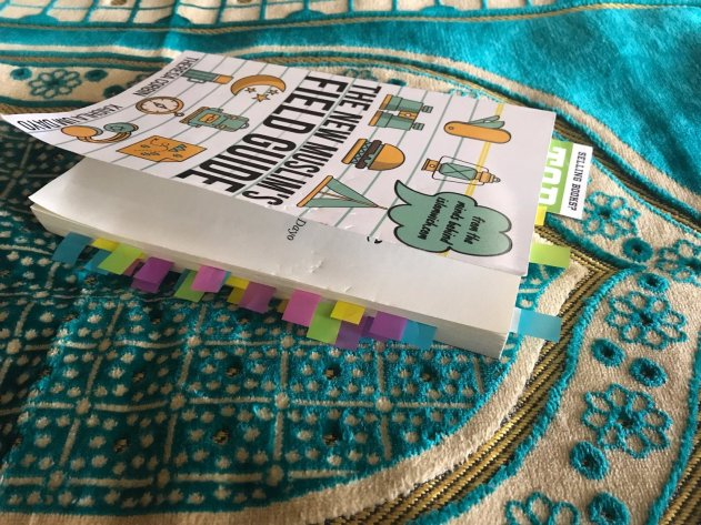 the new guide papatias copy.jpg